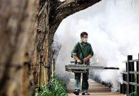 巴西登革热疫情蔓延近千城镇