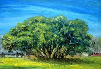 江西铜鼓的汤里温泉度假区在风景油画里太浪漫了!