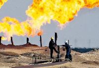 我国10亿吨级页岩油藏全面推进开发
