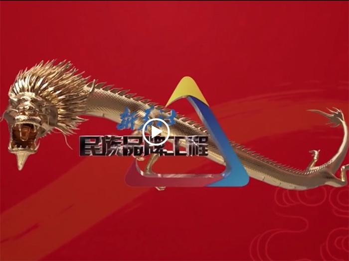 新华社民族品牌工程