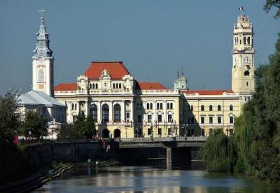 首届国际中医药大会在罗马尼亚召开