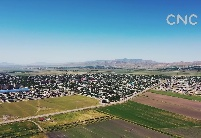 探访丹加拉中泰纺织园:中塔农业合作造福塔吉克斯坦人民