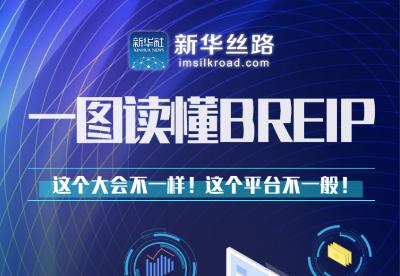 """一图读懂""""一带一路""""经济信息共享网络(BREIP)"""