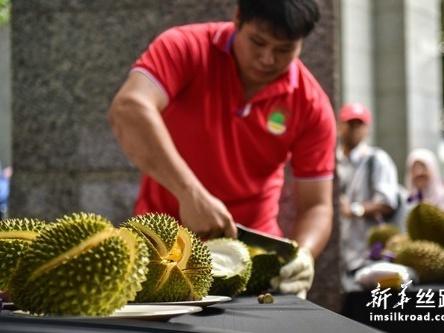 马来西亚首批冷冻带壳猫山王榴莲发往中国