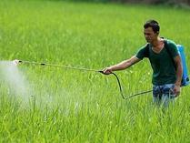 巴西卫生监督局:半数以上公众要求禁用草甘膦农药