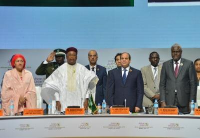财经观察:非洲大陆自贸区正式成立  中非合作迎来更多机遇