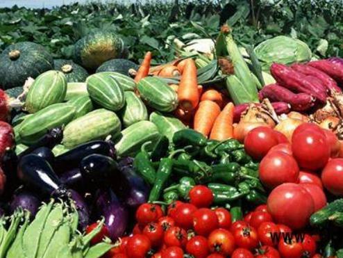 乌欧农产品贸易额增长近四分之一