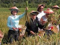 文莱希望借中国技术提升粮食自给率