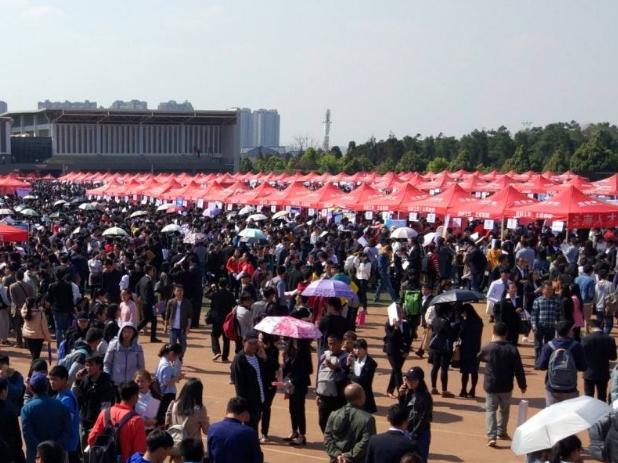 内蒙古帮助8.29万名高校毕业生就业或落实就业去向