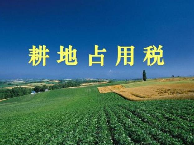 广东省确定耕地占用税适用税额