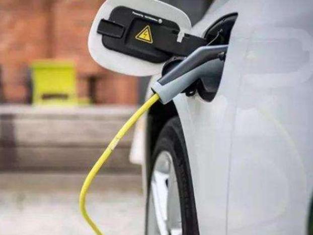 印度媒体称政府或暂缓实施电动车发展规划