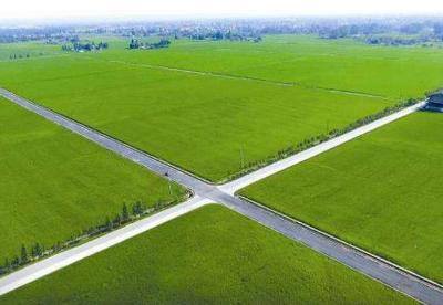 河南将新建155万亩高标准农田
