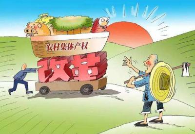 重庆整市推进农村集体产权制度改革