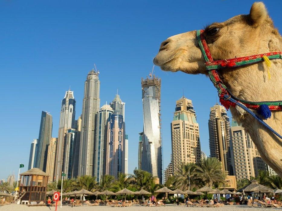 迪拜上半年国际过夜游客总量达836万人次