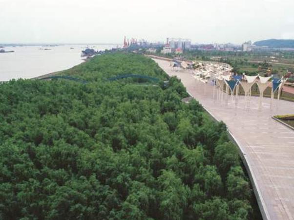 南京:加强港口治理 保护长江生态