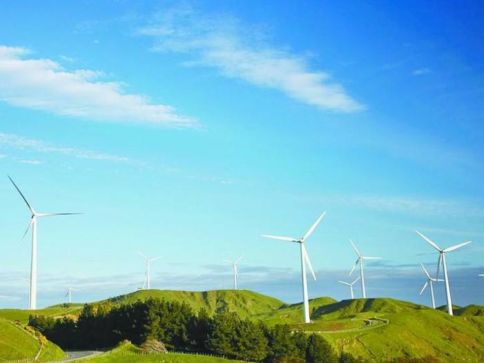 专家:中巴新能源领域合作前景广阔