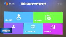 重庆市就业大数据服务平台建成投用