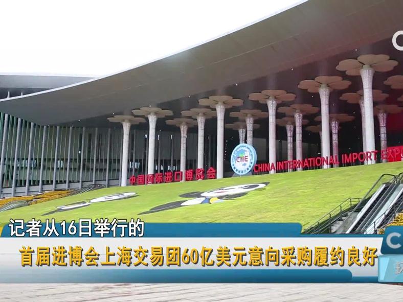 首届进博会上海交易团60亿美元意向采购履约良好