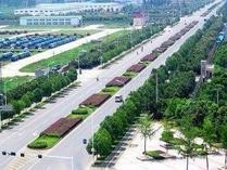 山东河口经济开发区换道超车全力打造高质量发展新引擎