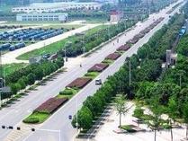 中国中建设计集团王豪勇一行到山东河口经济开发区考察