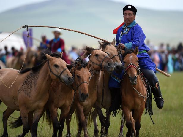 马文化正在成为内蒙古草原旅游新亮点