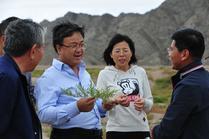 宁夏:提升贺兰山综合生态保护能力筑牢绿色屏障