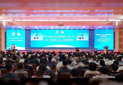 第十三届中小企业商机博览、第十一届中国(玉林)中医药博览会开幕