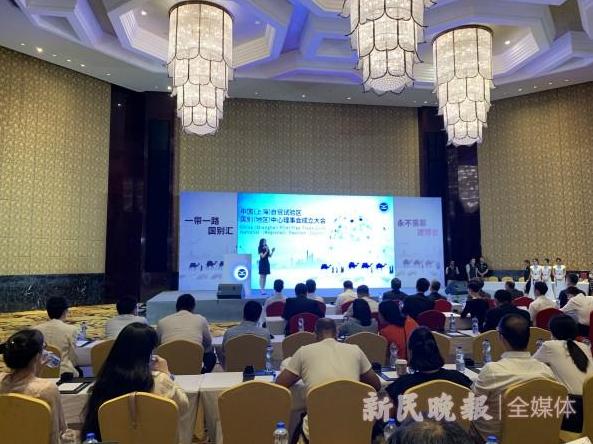 上海自贸试验区国别(地区)中心理事会成立