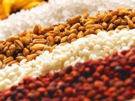 民政部:我国粮食行业助力脱贫成果丰硕