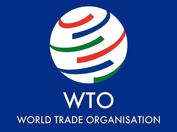 世贸组织报告看好服务贸易发展