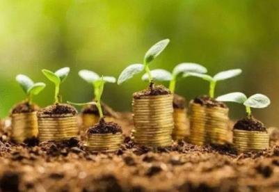 福建:优质金融服务助力台企台农发展壮大
