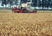 保农业生产率提高十倍
