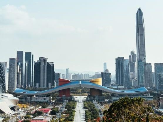 中国人工智能愿景的现实检验