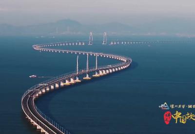 超级工程的跨越者——港珠澳大桥岛隧项目总工程师林鸣