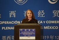 中墨政商界谈两国贸易投资新机遇