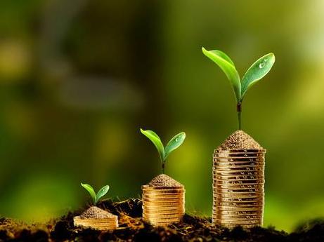 透视2019金融数据:支持实体更有力 贷款结构更优化