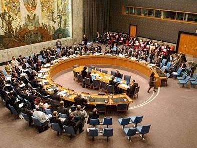 爱沙尼亚等5国开始担任安理会非常任理事国