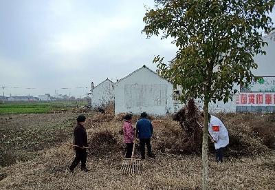 """宿州泗县:疫情防控""""不松懈""""    环境整治""""不断档"""""""