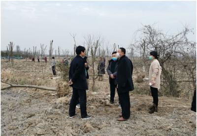 安徽天长:防疫和造林两手抓两不误