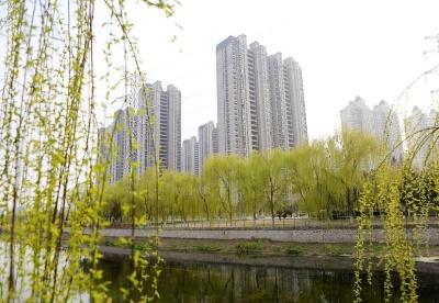 安徽濉溪:努力建设绿色生态宜居新城