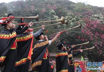 贵州:百里杜鹃花开迎春 景区客流回升