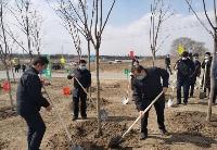 江泽林、王凯等吉林省市领导参加长春莲花山度假区义务植树活动