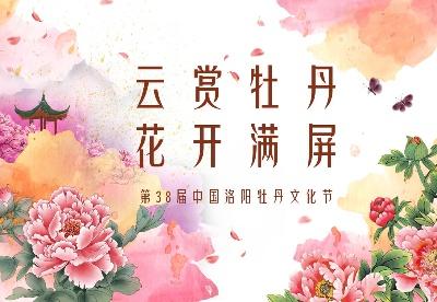云赏牡丹  花开满屏——第38届中国洛阳牡丹文化节线上直播