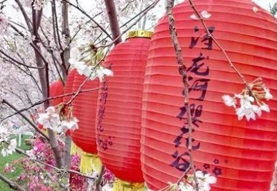 陈文胜:浔龙河村乡村振兴的多元投入机制创新实践