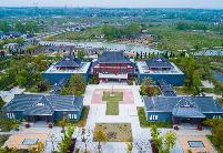 肥东白龙镇:新型产业带动乡村振兴发展
