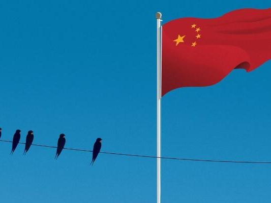 东南亚华人家族企业和中国的联系