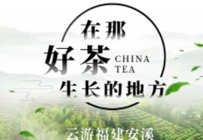 """福建:安溪携手新华社""""快看""""开展""""在那好茶生长的地方""""主题直播活动"""