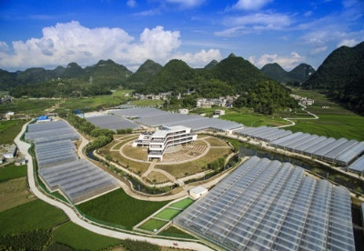 贵州全产业链推动中药材产业发展