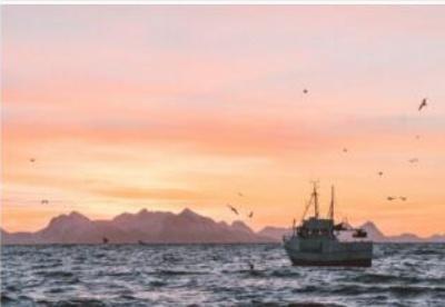 确保海洋健康和财富进行的四种投资