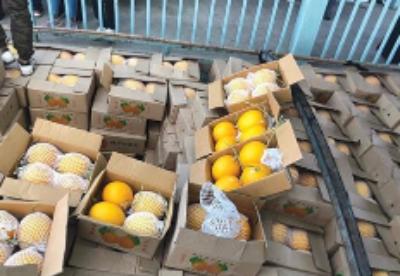 缅甸寻找水果出口的国外新市场